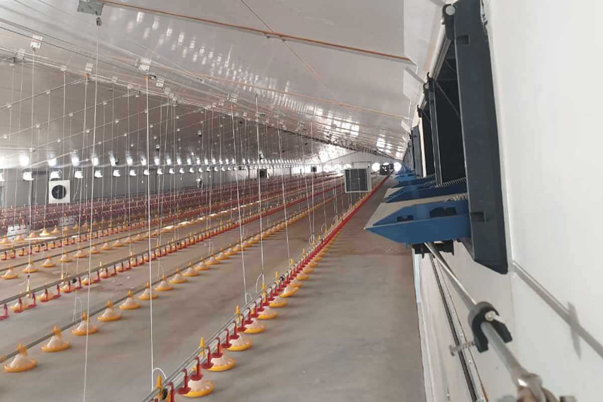 dynamic-broiler-floor-systems-4