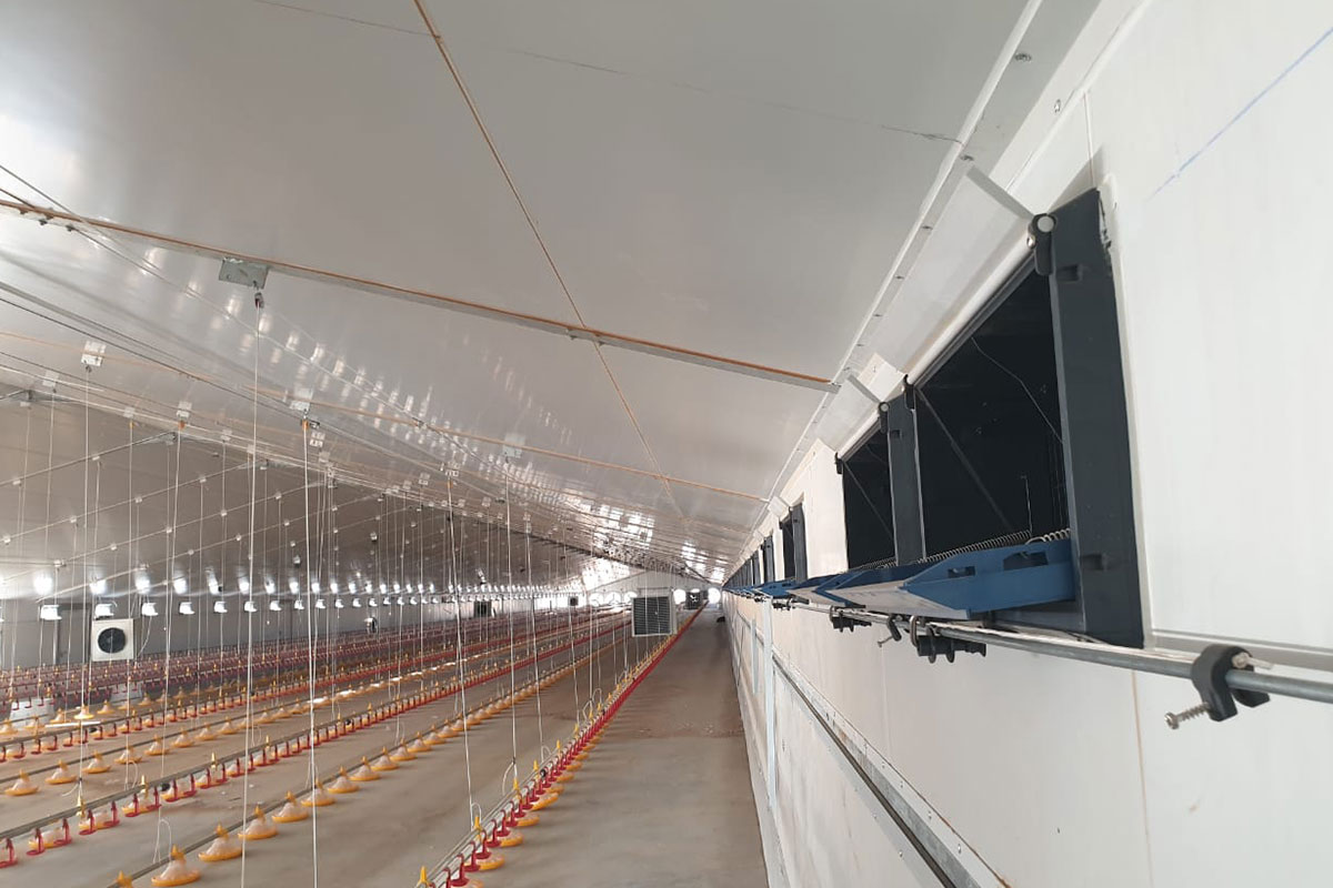 dynamic-broiler-floor-systems